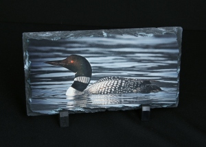 Loon on Slate by 2009 NYS4-HSS Artist of the Year, Rich Johnson, Spruce Mountain Photography