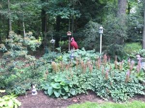 Cardinal by Brian Ruth